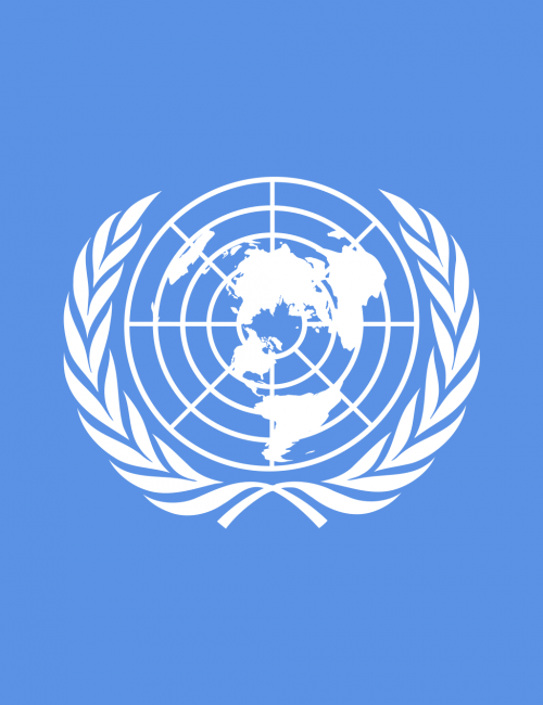Comprendre l'écosystème Mobile Money : formation sur-mesure auprès d'une agence de l'ONU